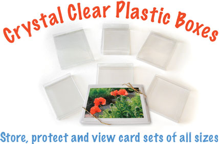 Crystal Clear Plastic boxes