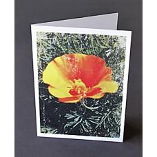 Custom Printed A9 Greeting Cards