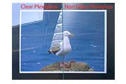 Non Glare Plexiglass